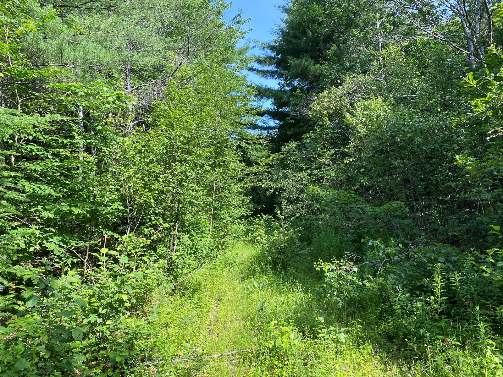 Somerset County Maine Land For Sale