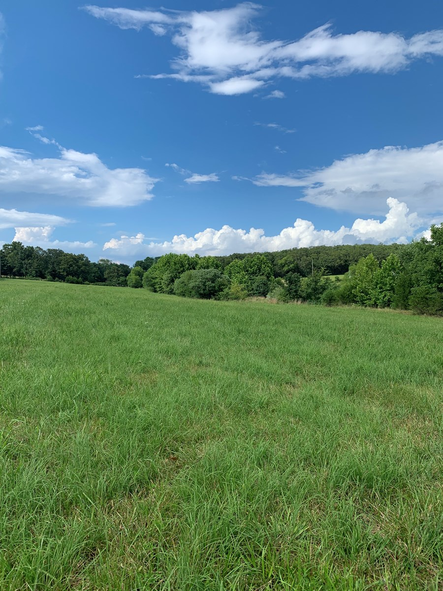 MO land for Sale Pasture, Farm, Hunting, Recreational
