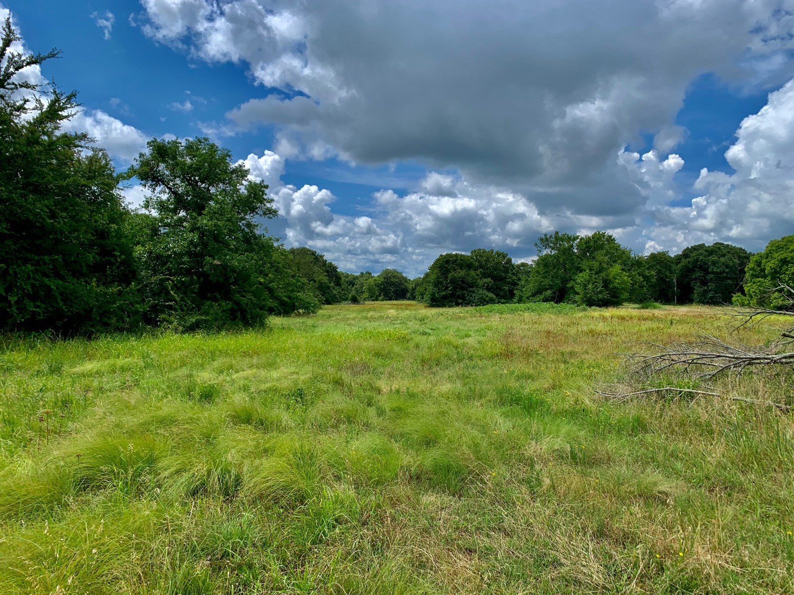 40 Acres for Sale - Hunt or Build - SE of Prague, Oklahoma