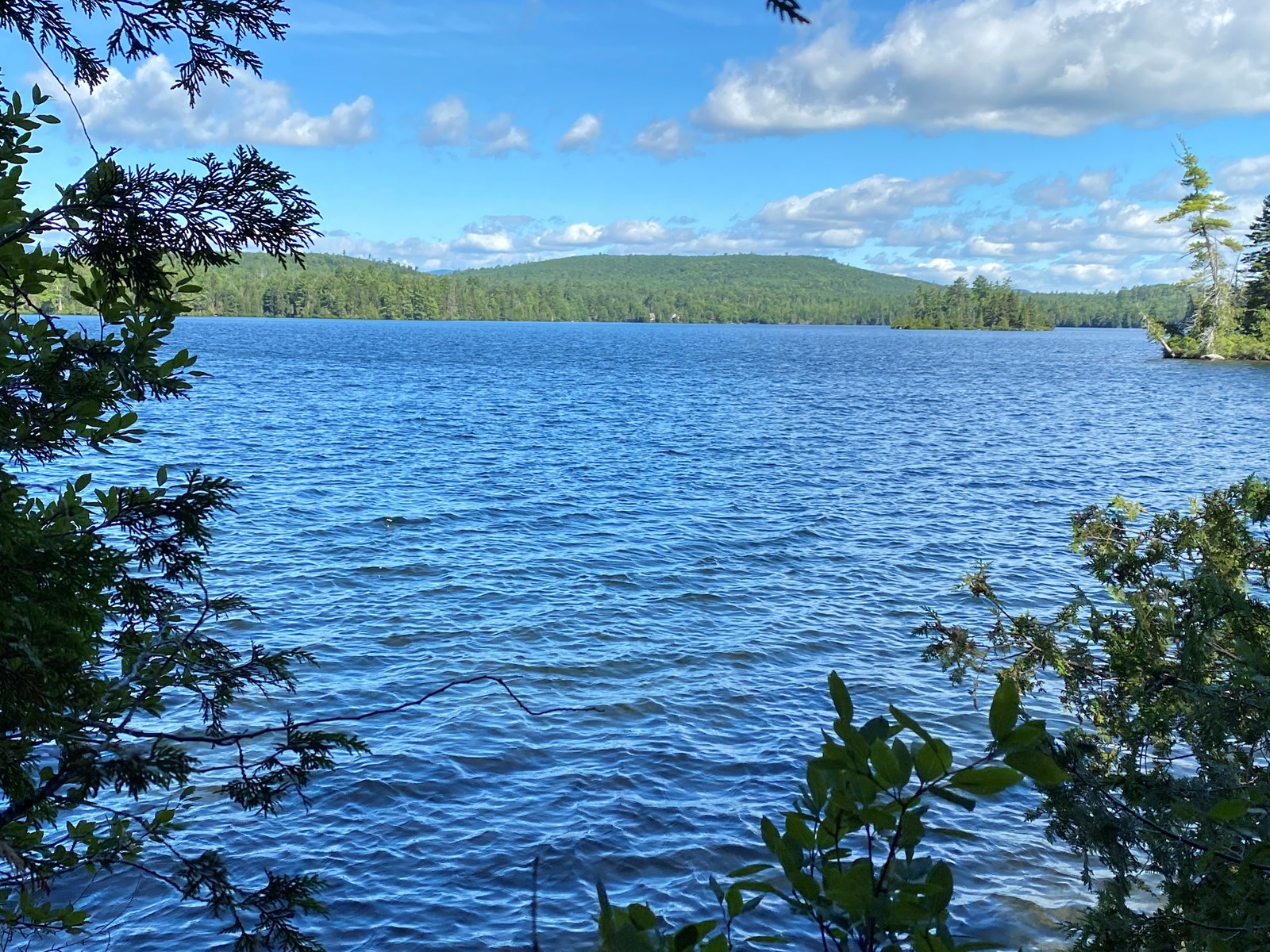 Land for Sale in Lakeview Plt, ME