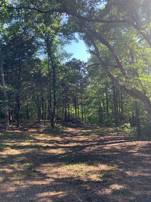 Pending Wooded Acreage
