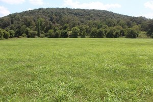 LOTS FOR SALE NEAR MOUNTAIN VIEW AR