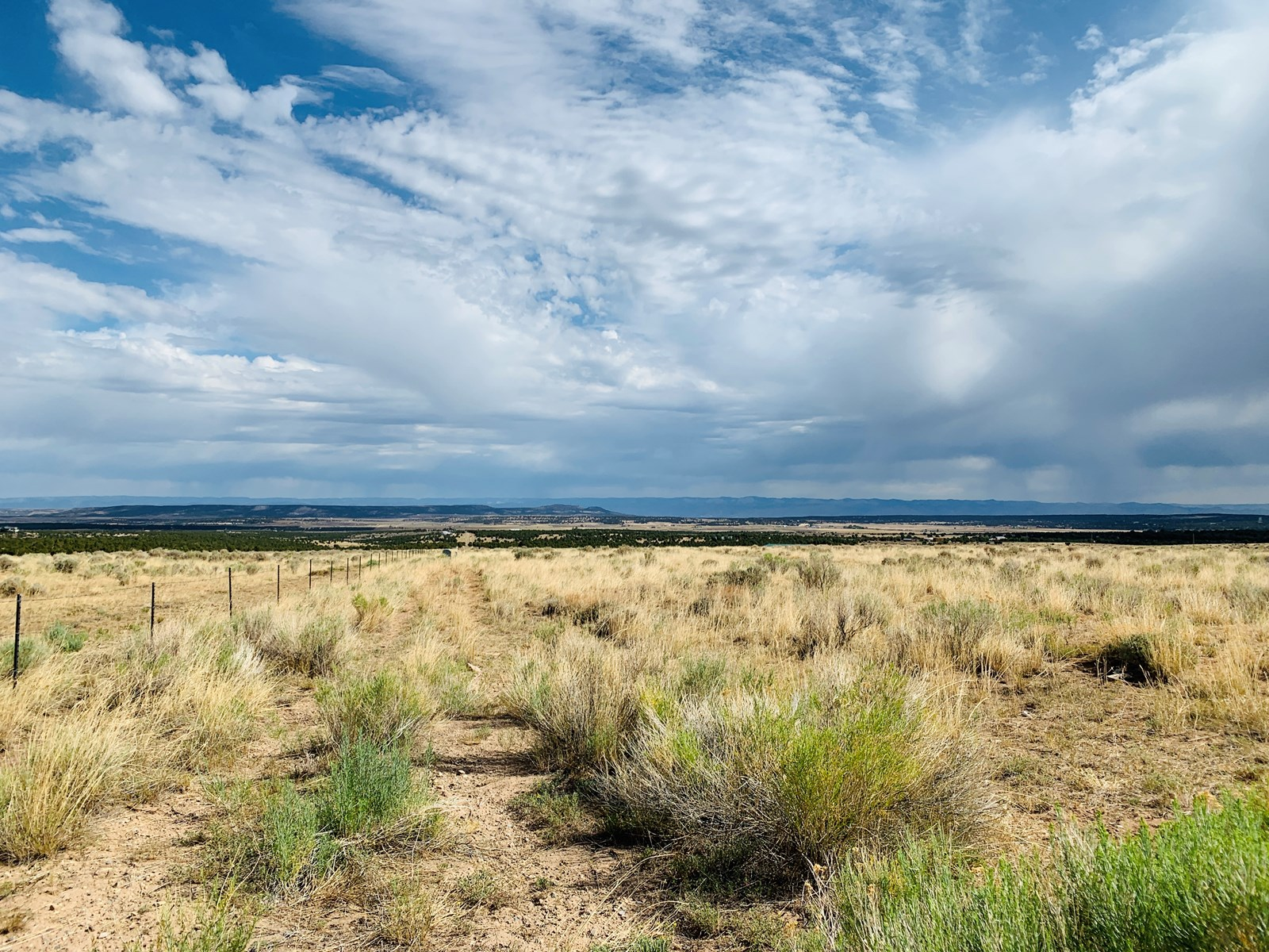 Colorado Land for Sale Grand Junction Real Estate