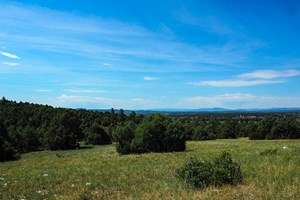 CHAMA NM MOUNTAIN LAND FOR SALE RECREATIONAL REAL ESTATE