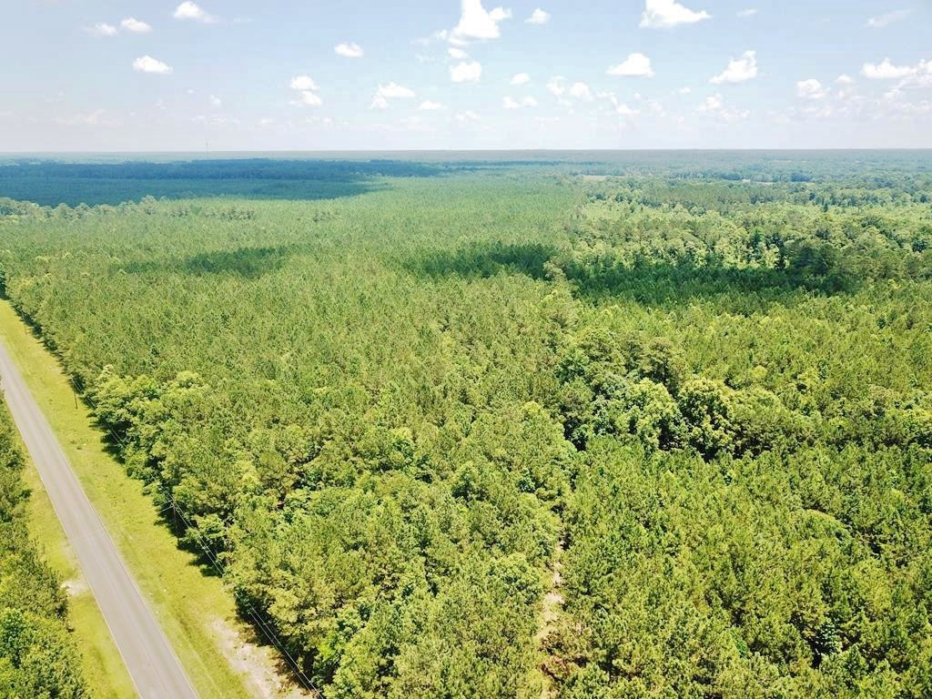 31.65 Acre Hunting & Timber Land for Sale Southwest MS