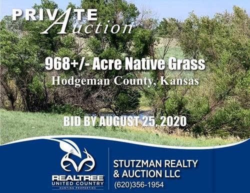 HODGEMAN COUNTY, KS ~ 968+/- ACRE RANCH / HUNTING ~ AUCTION