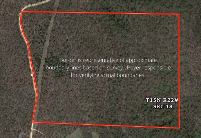 Recreational/Hunting/Timberland for sale in Newton County