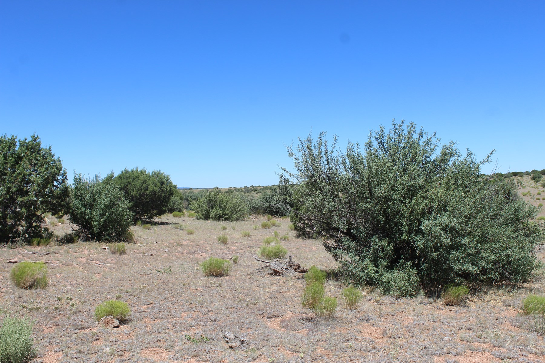 Affordable Mountain Land in Northern Arizona for sale