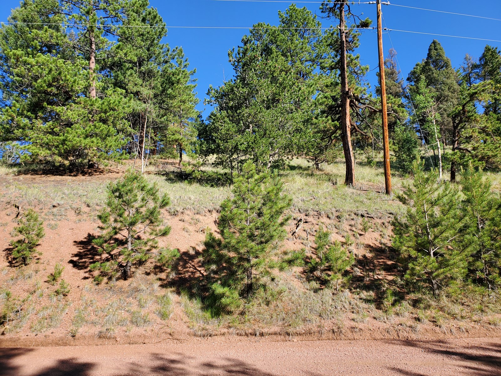 Vacant land Wooded Teller County CO Hiking Fishing ATV'ing