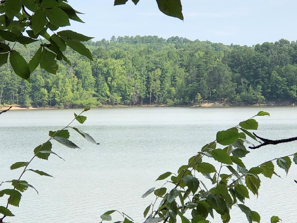 2 Acres of Waterfront on Buggs Island Lake, VA