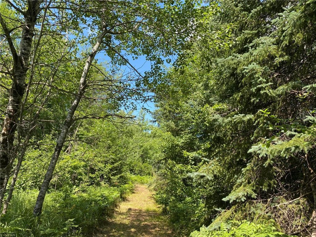 10 Acre Land Parcel for Sale in Northern MN, Creek Frontage
