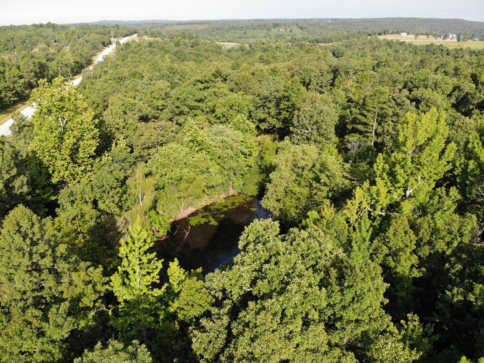 2.95 m/l Acres for Sale with Pond in Searcy County Arkansas