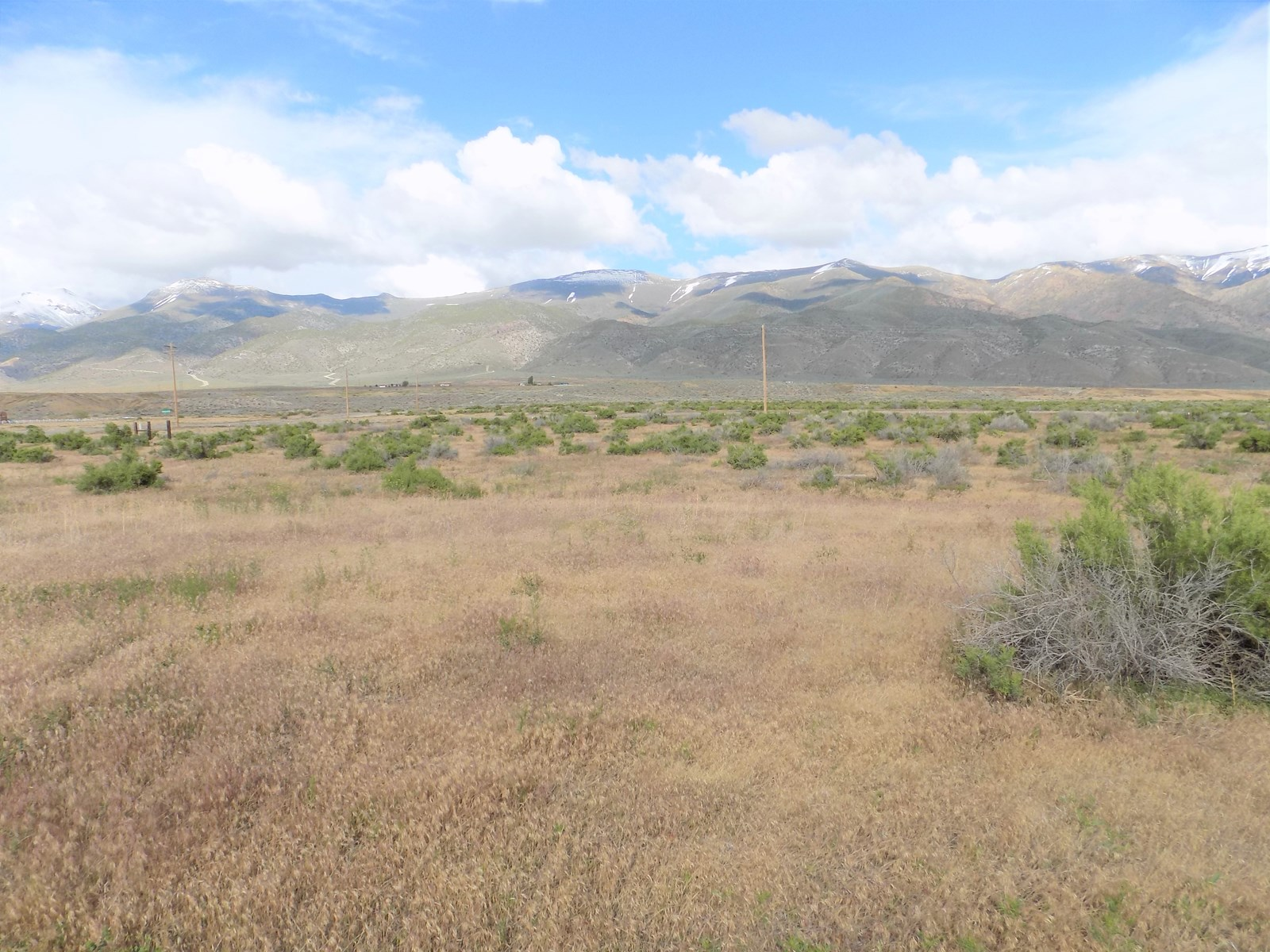 Commercial Land for Sale in Humboldt River Ranch