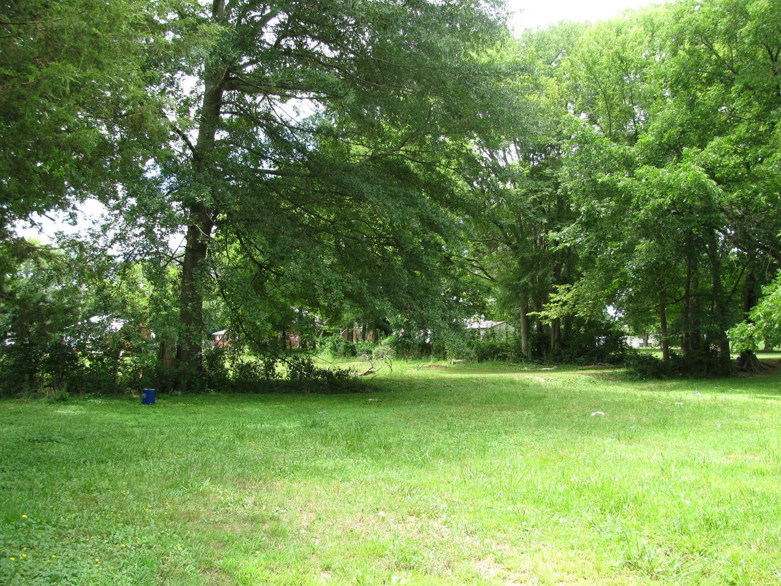SMALL TOWN LOT IN ADAMSVILLE, TN, LOT IN TOWN