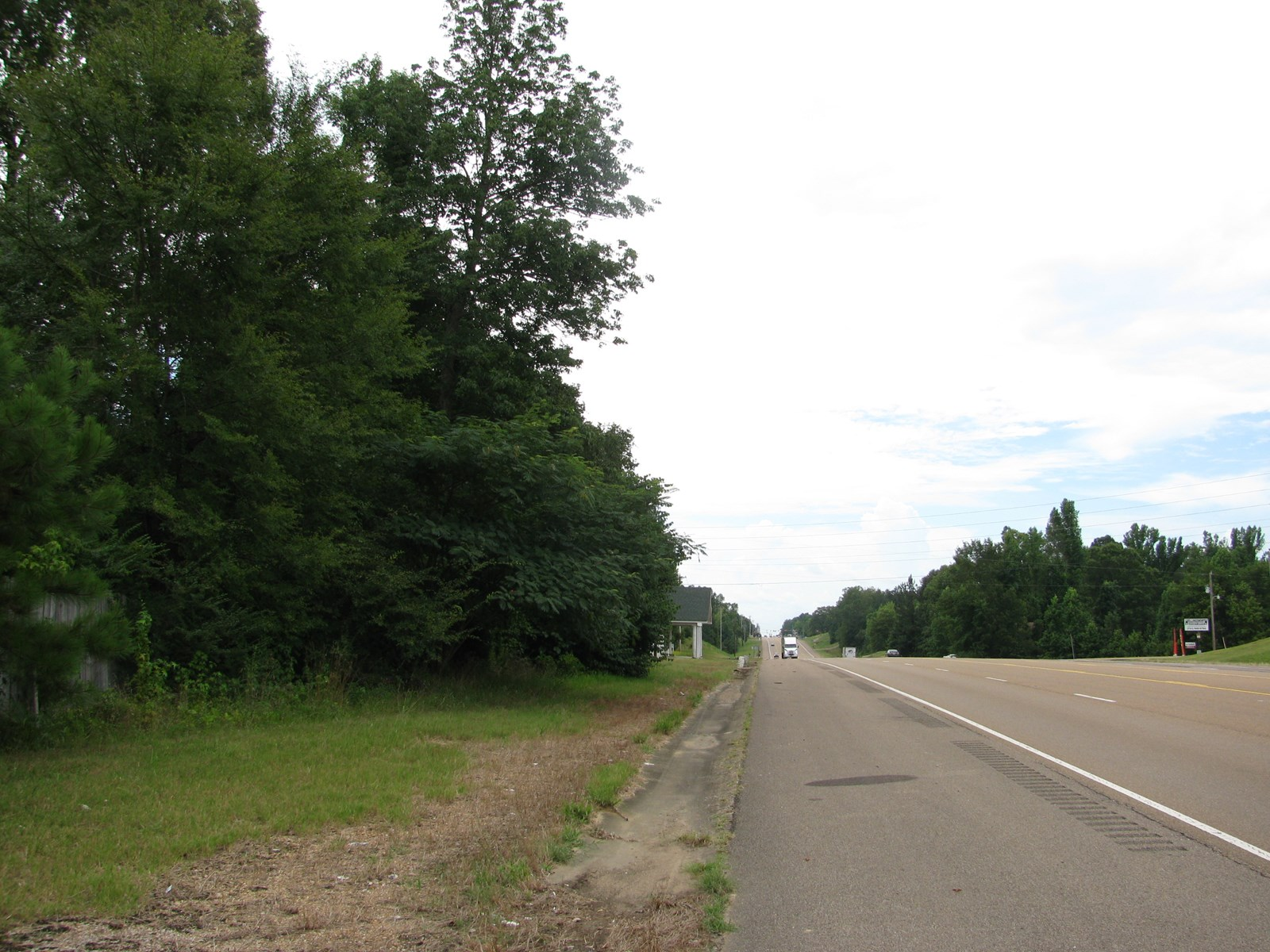 LAND FOR SALE ON HIGHWAY IN RAMER, TN, OLD HOUSES