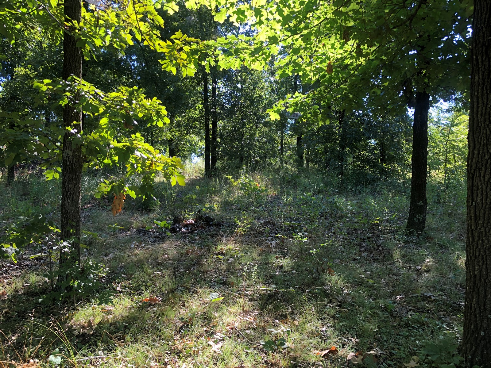 Lake Hudson Access lot, Plum Tree Estates, Salina, Oklahoma