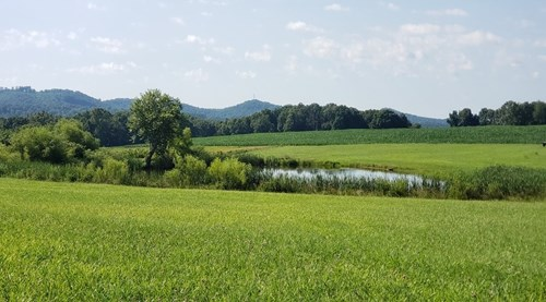 Income producing Hunting Farm located in Pike County Ohio