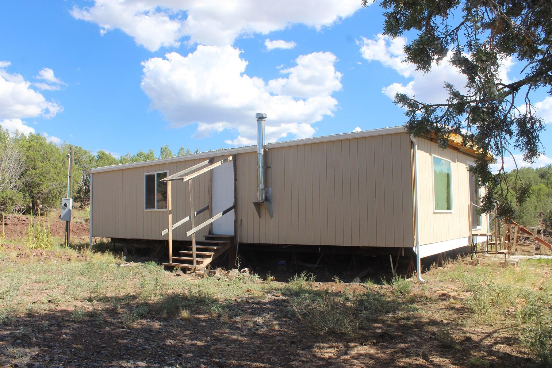 Home for Sale, Fixer Upper in Ashfork, AZ