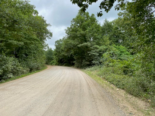 60 acres timberland For Sale, Huntsville, AR Madison County