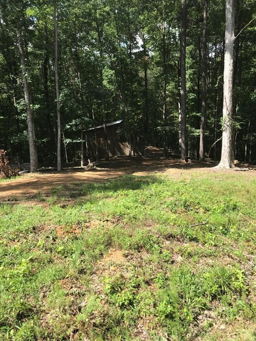 5 Acre Tract for Sale near Lake Lincoln State Park MS