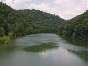 RIVERFRONT LAND FOR SALE TAZEWELL TENNESSEE CLAIBORNE COUNTY