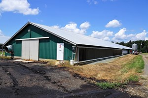 POULTRY FARM IN THE HEART OF NC