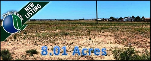 Acreage or Land For Sale in Carlsbad New Mexico