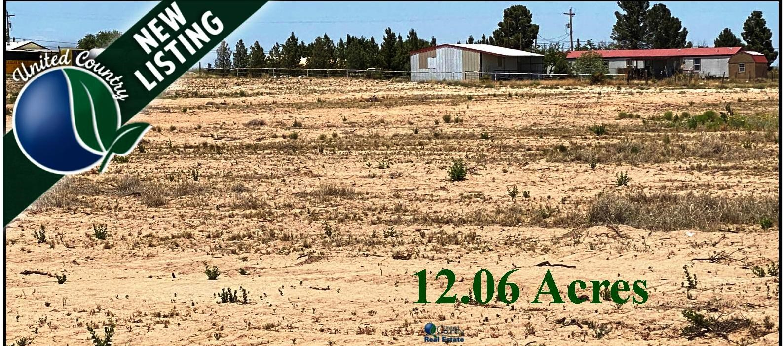 Acreage for sale near Carlsbad, NM.  Land for Sale