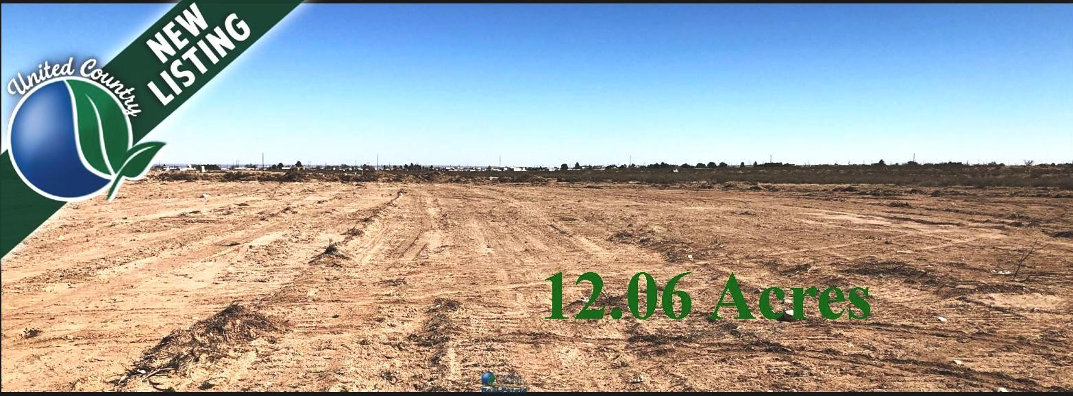Land for sale near Carlsbad NM.  Acreage for sale in NM