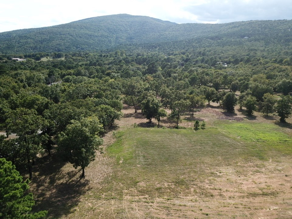MOUNTAIN VIEW 5 ACRE HOMESITE IN PRIVATE SETTING