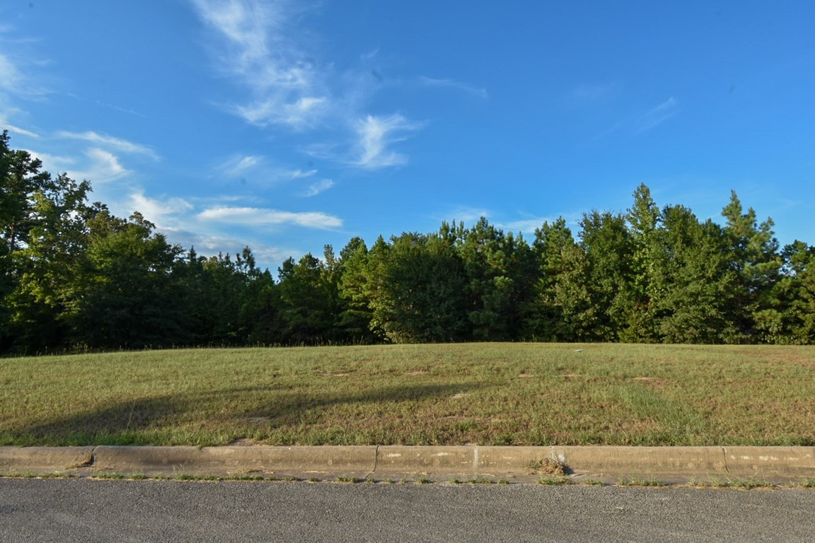 LOT FOR SALE LINDALE TEXAS, LAKE JACKSON