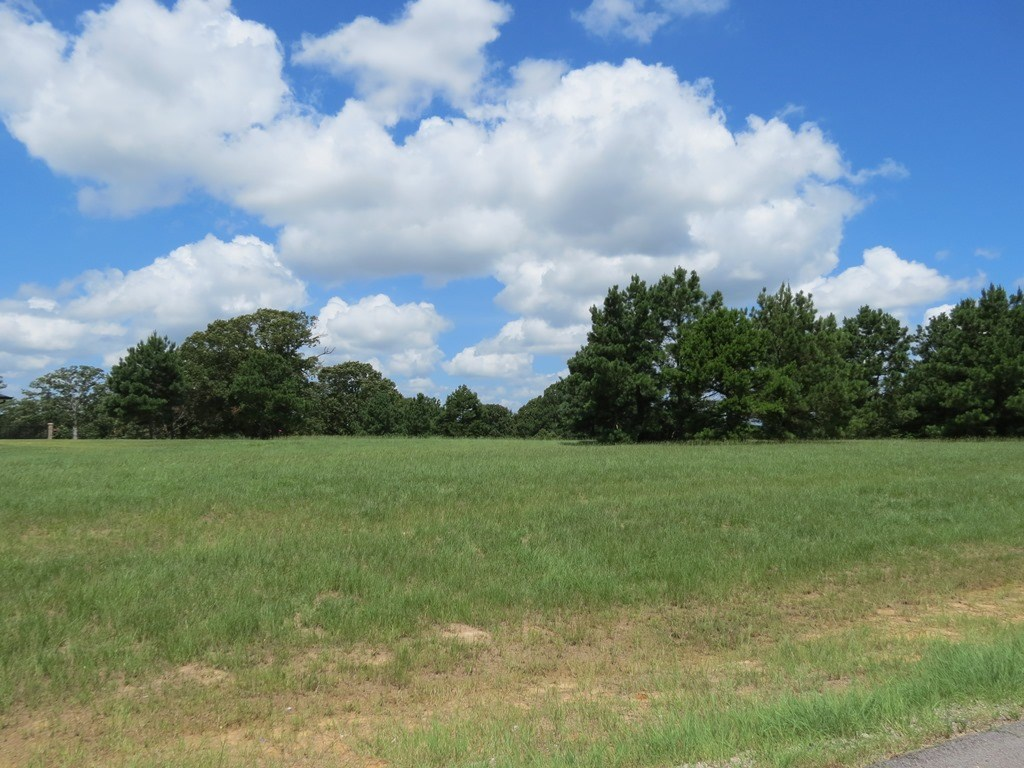 BEAUTIFUL LOT IN GARDEN VALLEY, LINDALE TEXAS