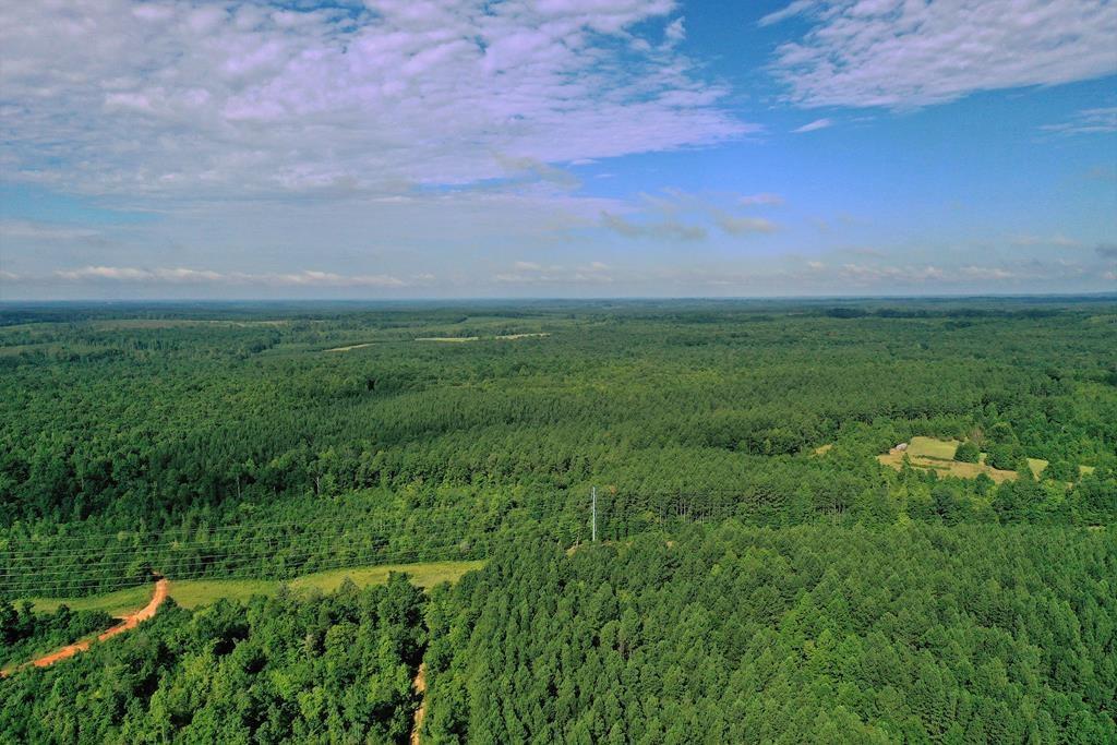 Mostly Pine Plantation Minutes Buggs Island Lake, VA