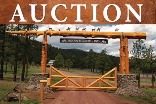 NO RESERVE LOT AUCTION IN HIDDEN MEADOW RANCH, GREER, AZ