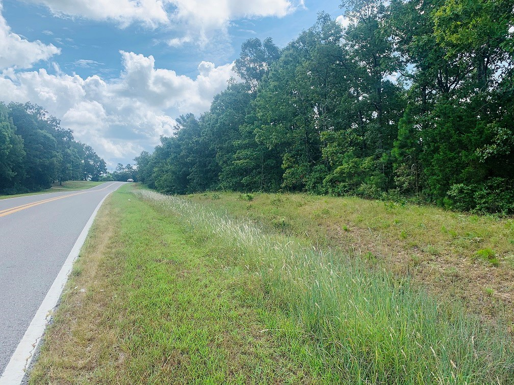 10 ACRES FOR SALE WITH BLACK TOP FRONTAGE