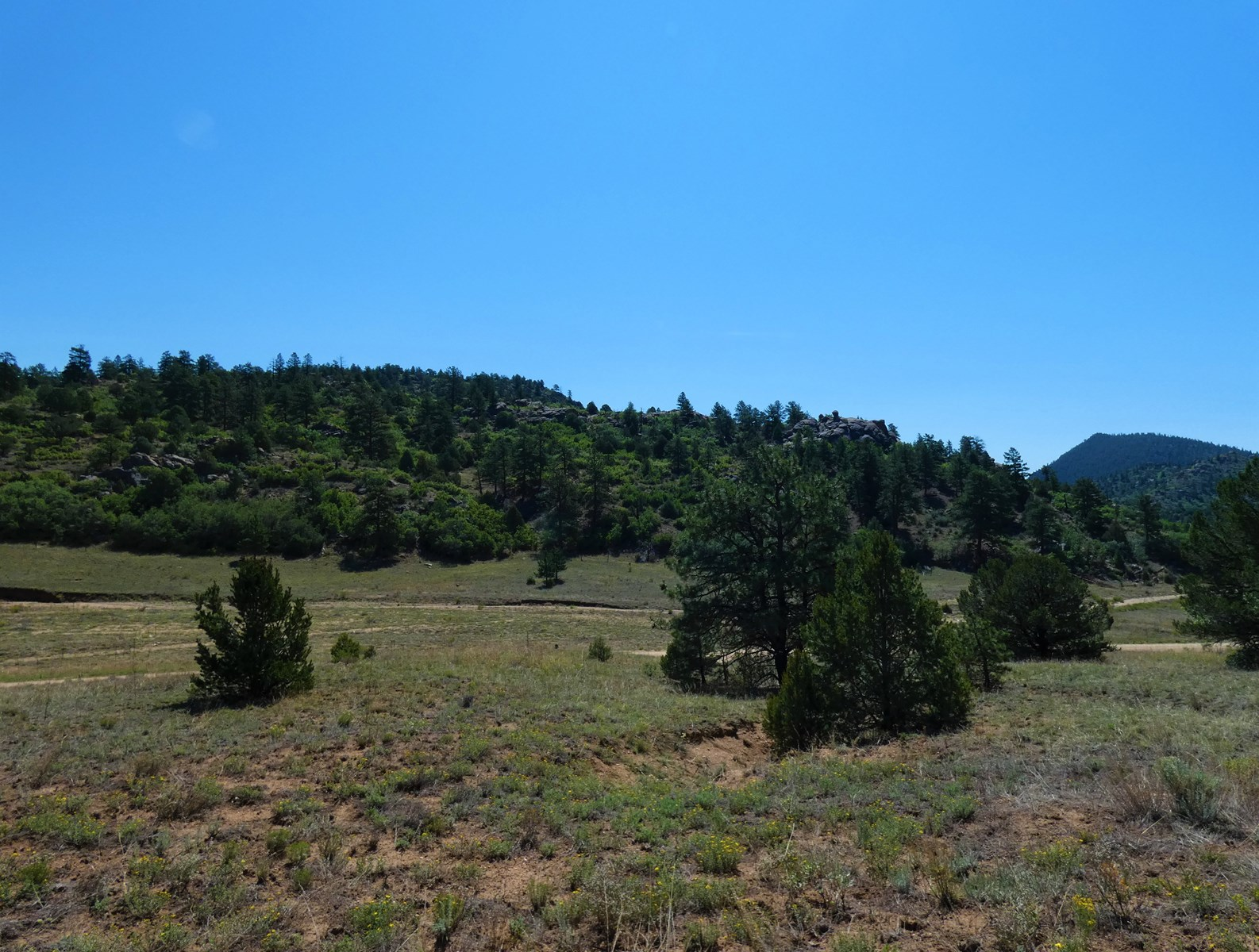 4+ Acres in Cotopaxi, CO-Build Your Mountain Retreat!