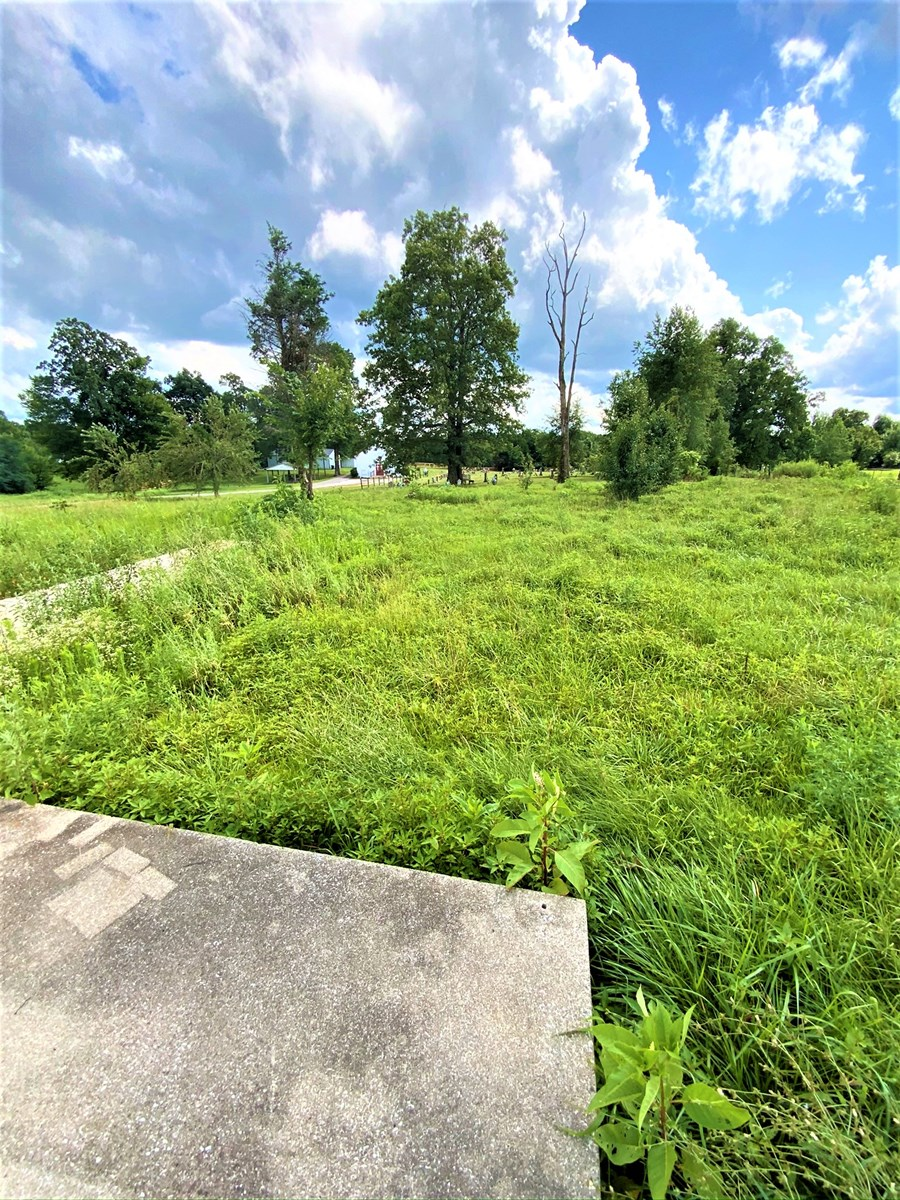 1/2 acre lot with Log Cabin Kit for sale in Hart county KY