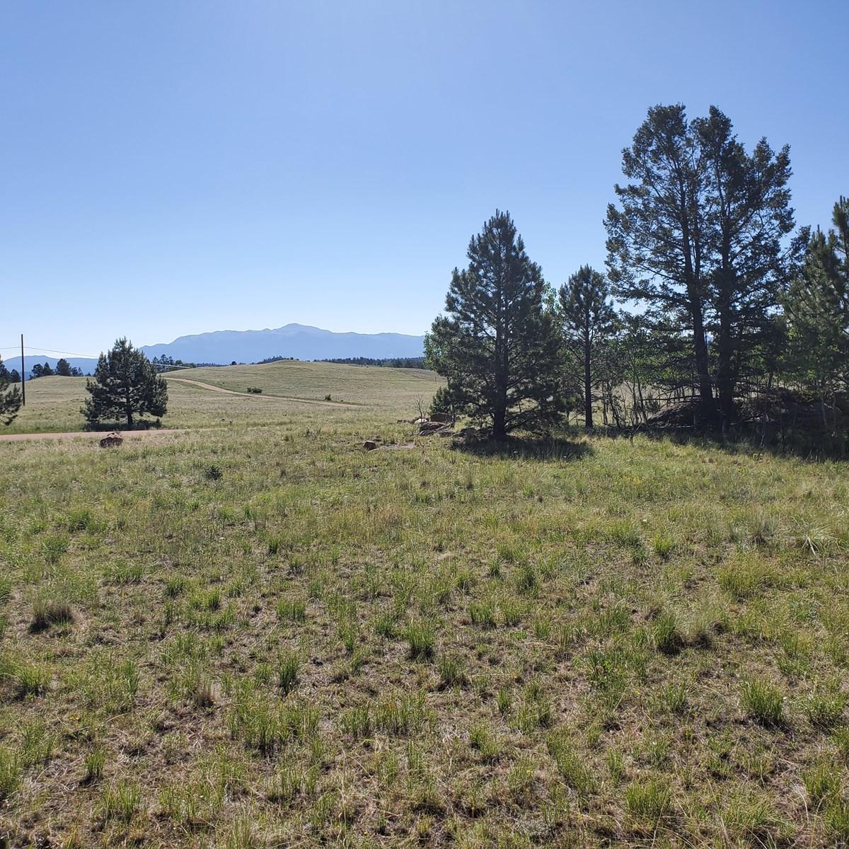 Mountain Lot  in Central Colorado Mountain