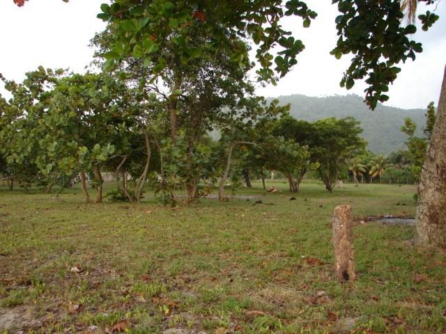 12.5 ac, Caribbean Coast, Desirable Development Area