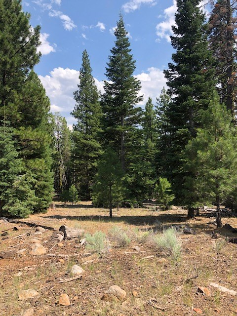 Land For Sale in California Pines!