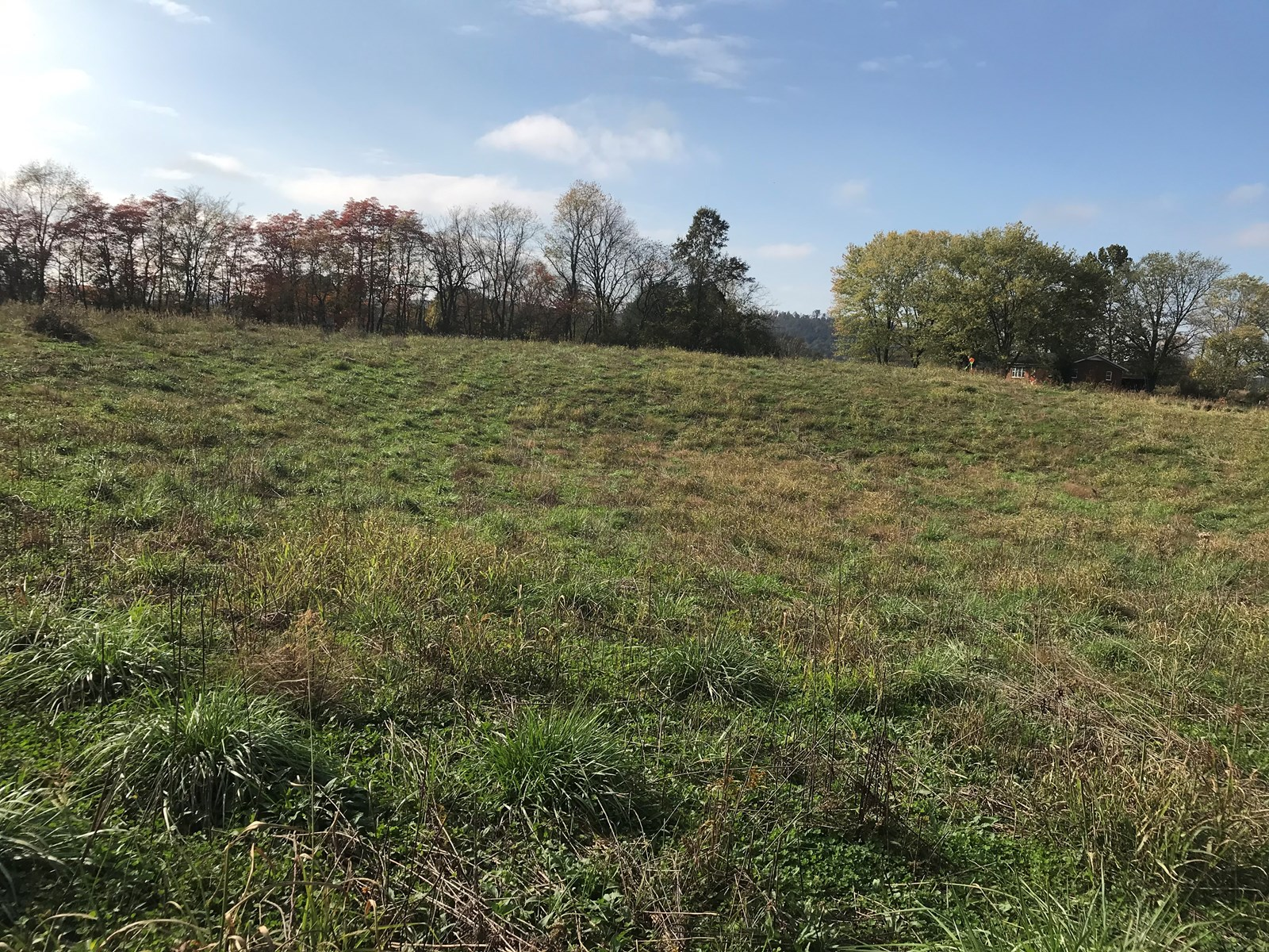 8 Acres Tommy Toms Road, No Restrictions