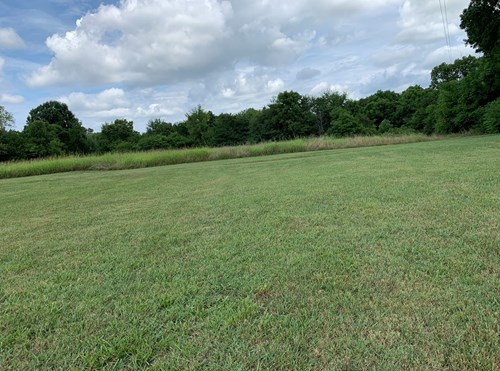 Tennessee Farm for Sale Loudon County- Sweetwater Land Sale