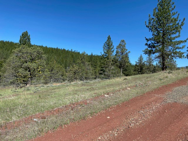 1 Acre of Land for Sale in Adin CA