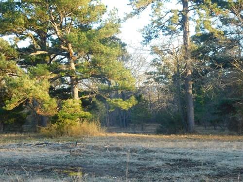 58 Acre Southeast Oklahoma Retreat