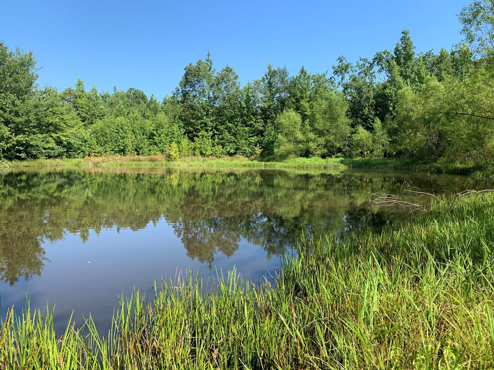Land for Sell in Tennessee with ponds, cabin site, hunting