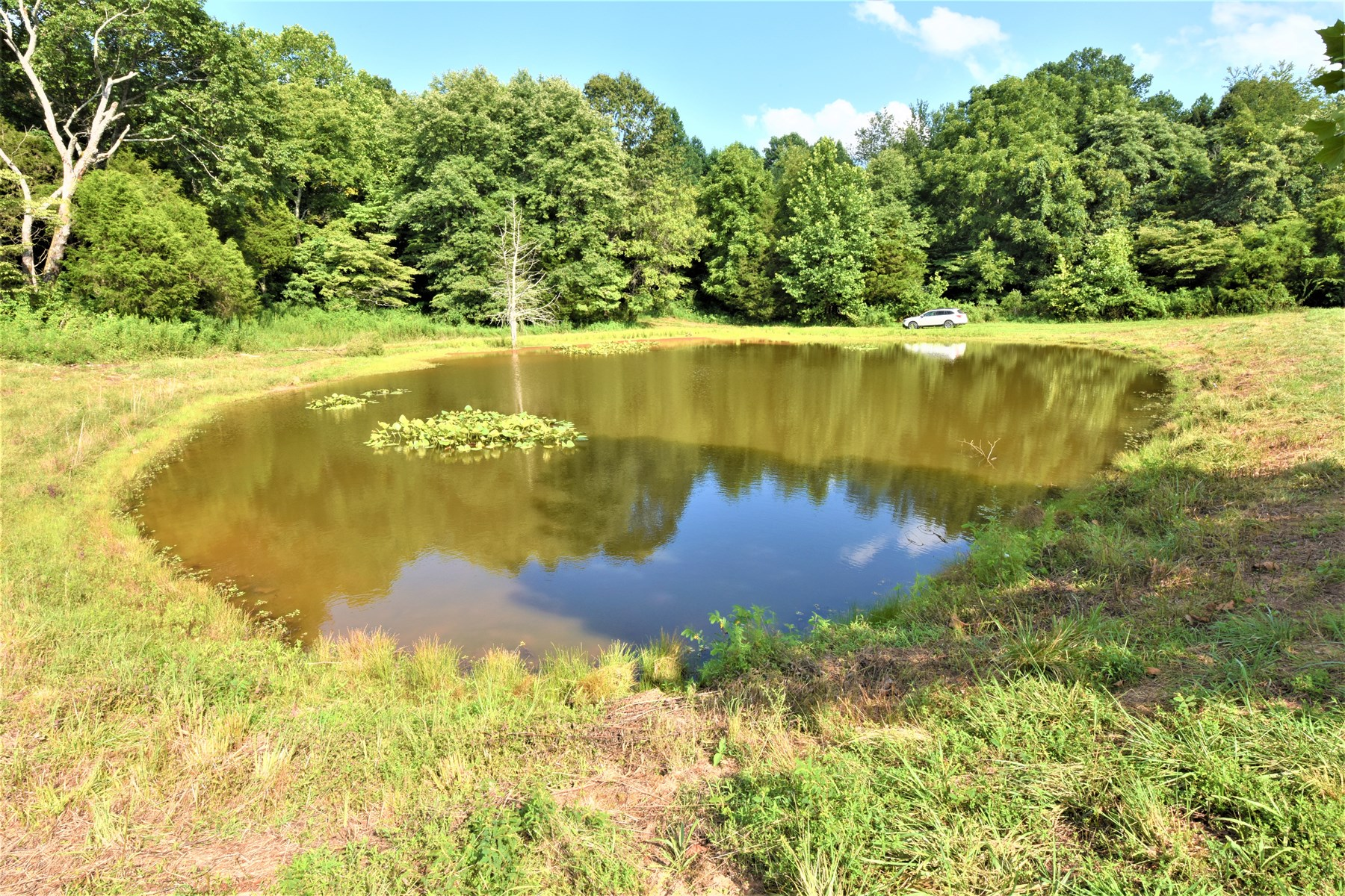 Hunting Land Fishing Home Site Pond, ATVs, Family Recreation