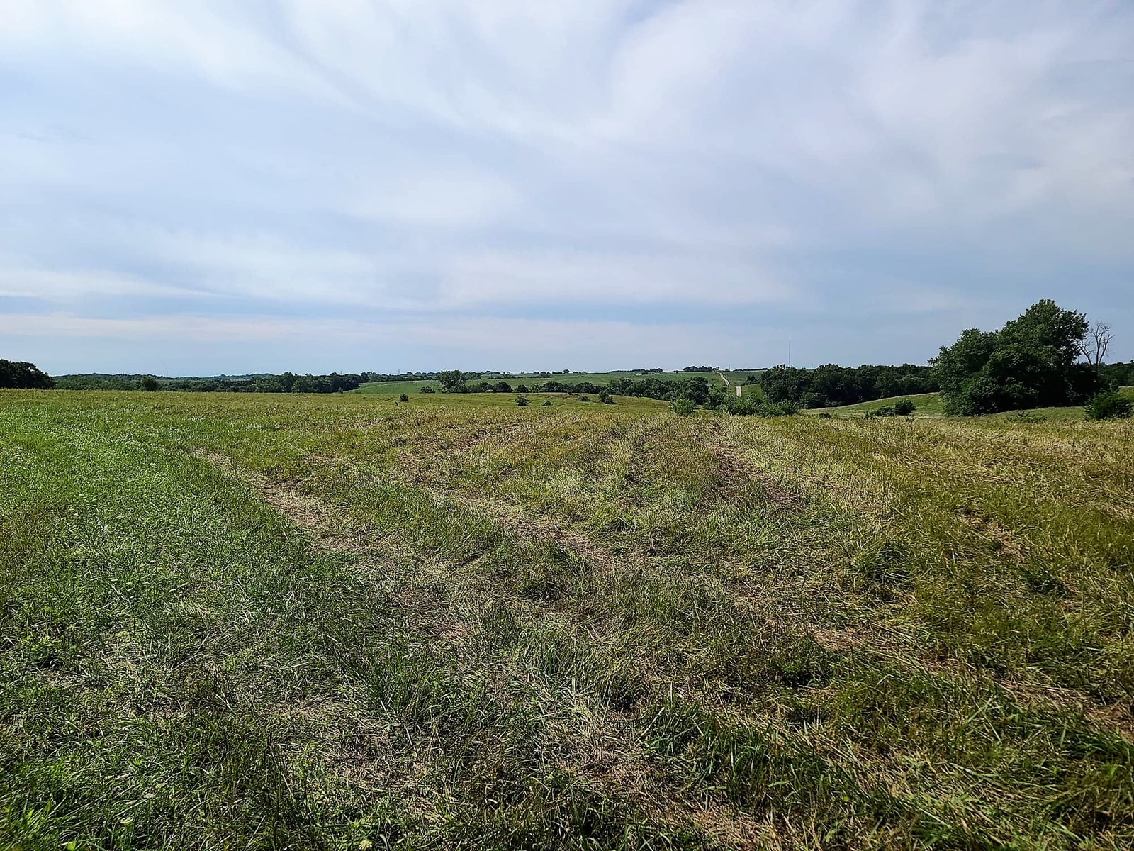 80 Acres For Sale in North Missouri