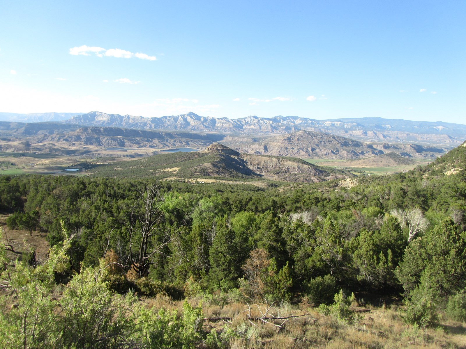 Vacant Land Borders BLM and National Forest For Sale in CO