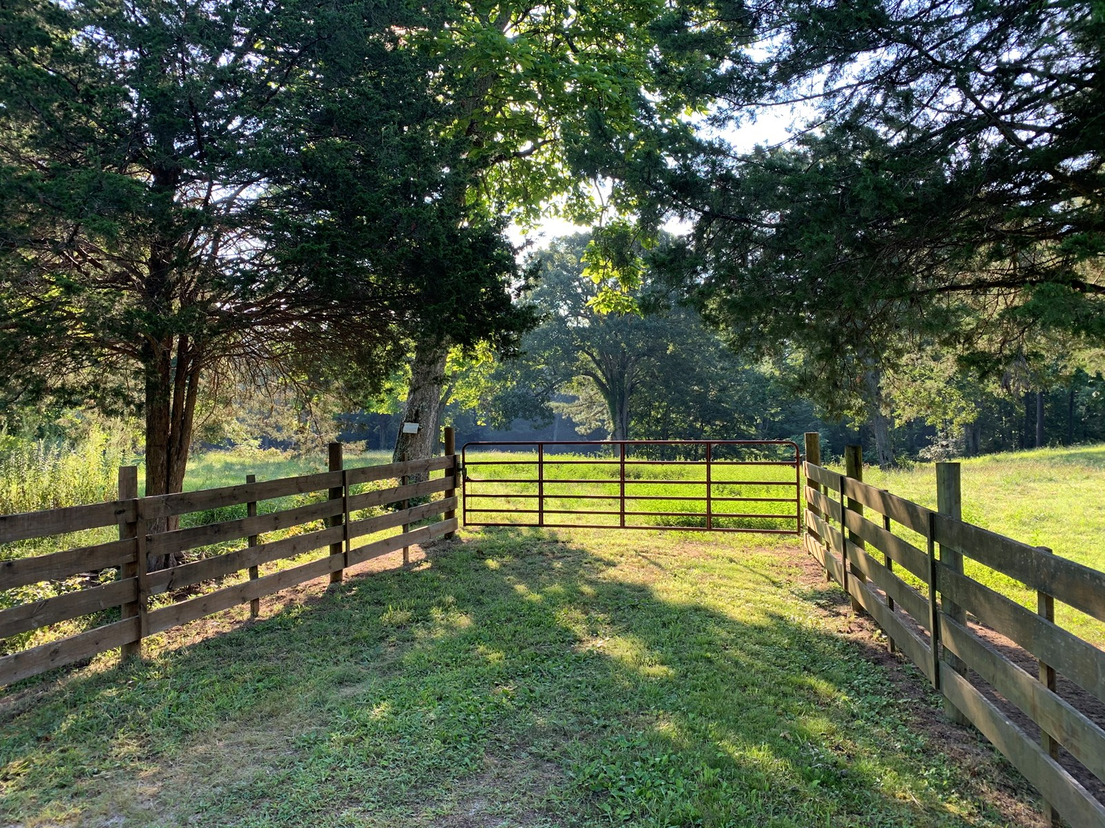 FENCED PASTURE , BIG SANDY TENNESSEE, WEST TENNESSEE