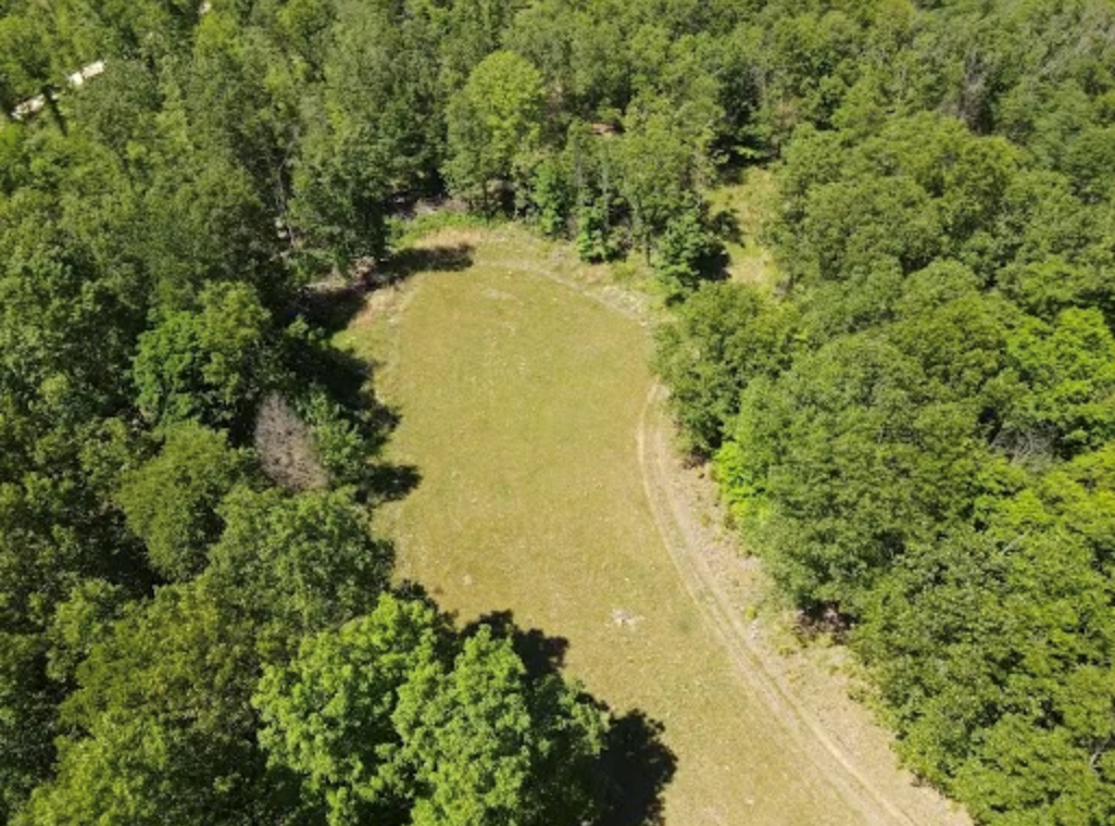 Prime Hunting Land For Sale in South Central Missouri